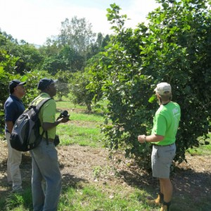 Ecologic Eco Shamba Tree Farm