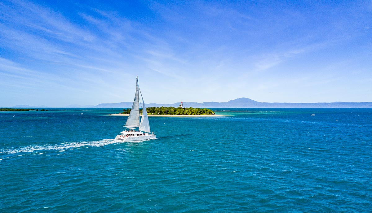 Great Barrier Reef Snorkelling Sailaway Reef Amp Island Tours