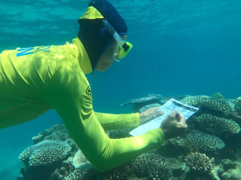 Eye On The Reef Img1