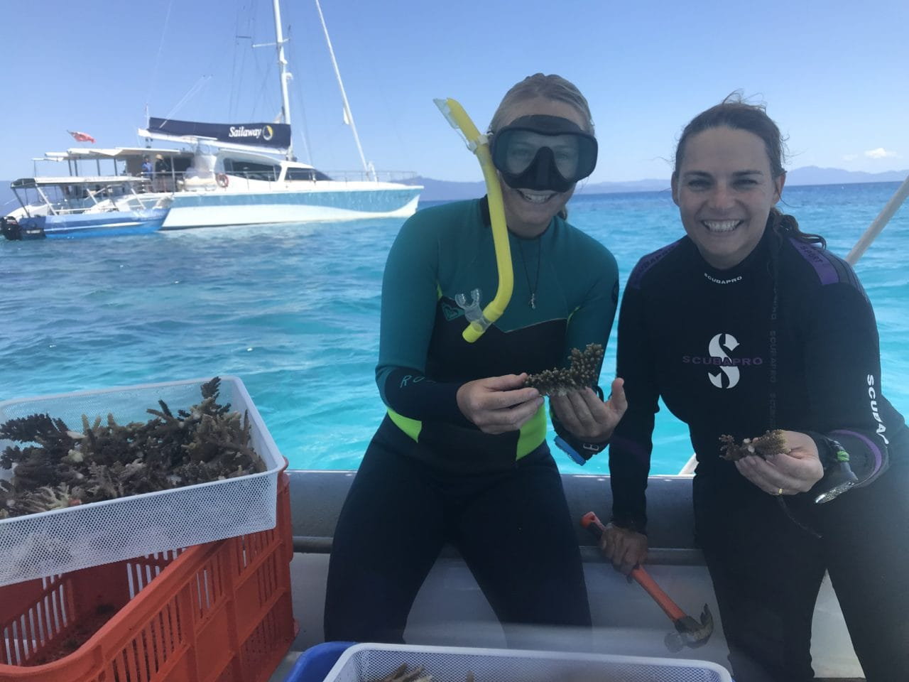 Photo of Sailaway's Team Champions during coral outplanting on 6 Sep 2019
